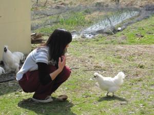鶏とチカモッチヤン